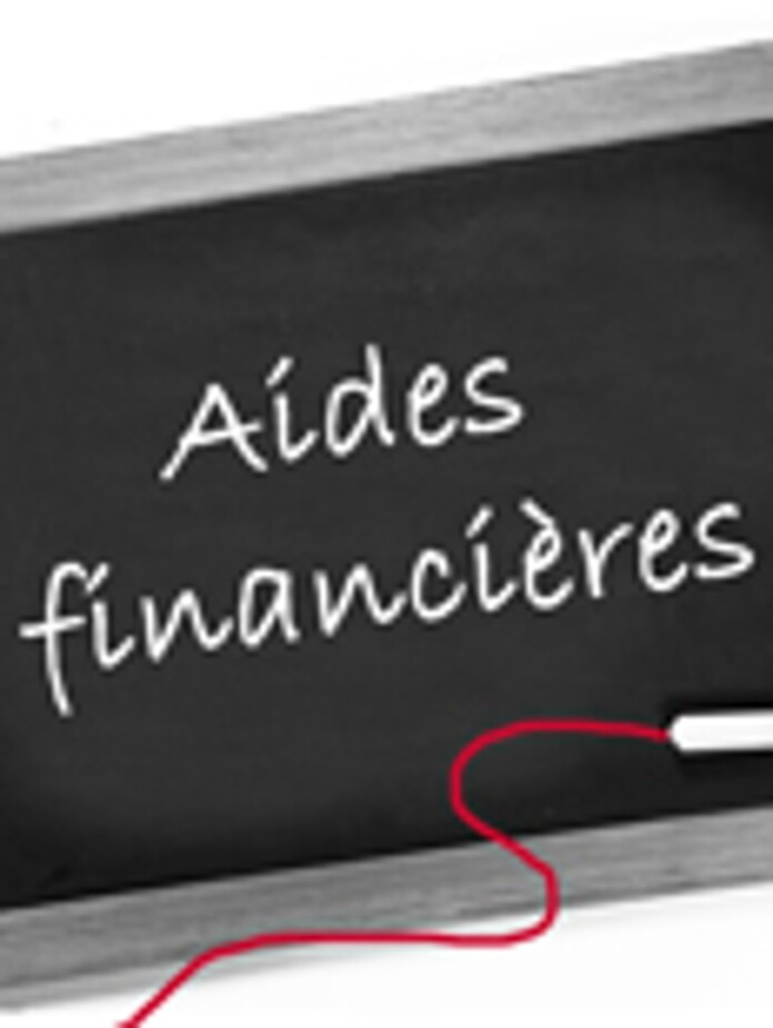 https://www.saunierduval.fr/france/btoc/conseils/financement/aides-financieres/aides-financieres-194-249730-format-3-4@696@desktop.jpg