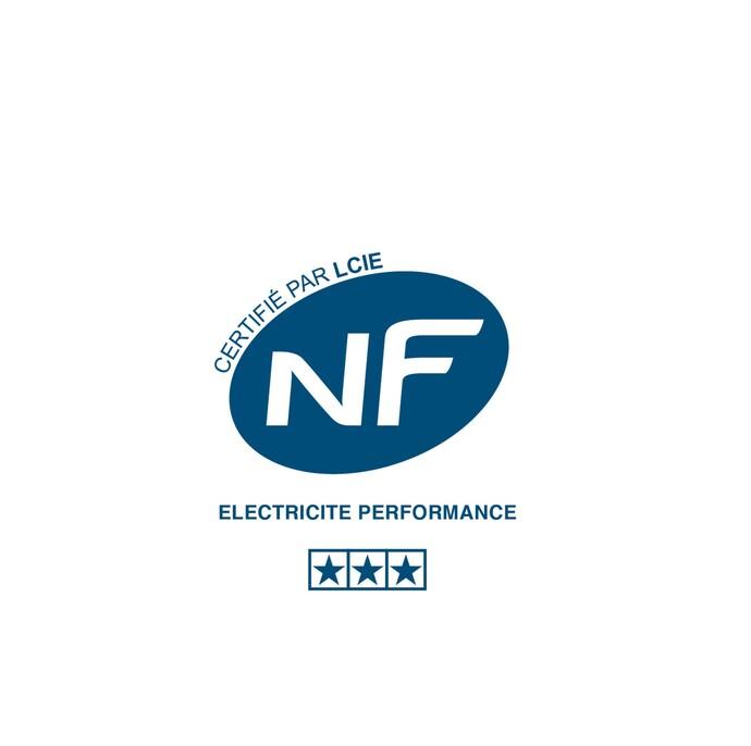 NF Électricité Performance
